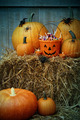Bucket filled with halloween candy and pumpkins - PhotoDune Item for Sale