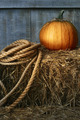 Large pumpkin with rope on hay - PhotoDune Item for Sale