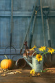 Pumpkin and flowers with tools - PhotoDune Item for Sale