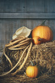 Pumpkins with rope and hat on hay - PhotoDune Item for Sale