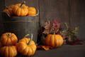 Miniature pumpkins on wooden - PhotoDune Item for Sale
