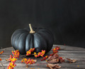 Black pumpkin with berries and leaves - PhotoDune Item for Sale