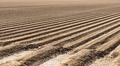 Prepared Farm Field Soil - PhotoDune Item for Sale