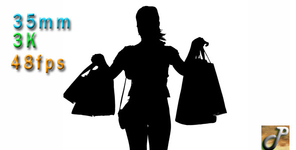 Silhouette Of Woman Holding Shopping Bags