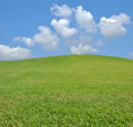 fresh grass and beautiful blue sky - PhotoDune Item for Sale