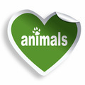 Green heart sticker with animals text and paw - PhotoDune Item for Sale