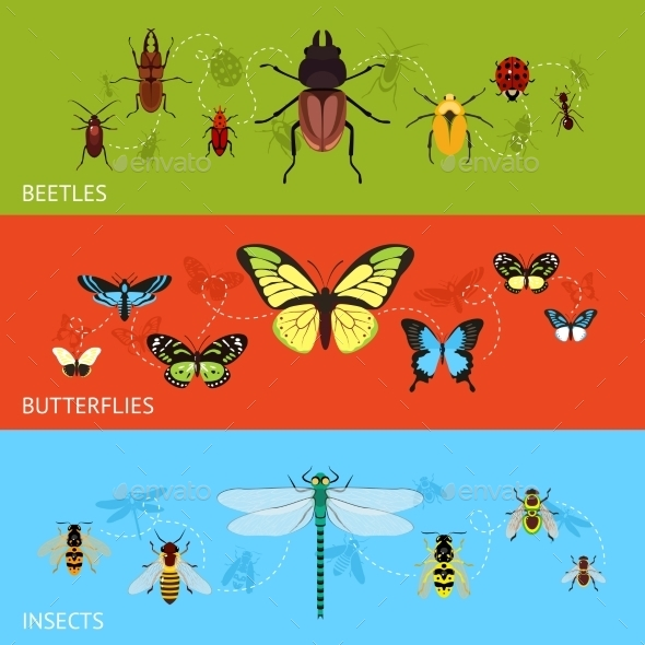 GraphicRiver Insects Banner Set 9562203