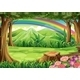 A Rainbow and a Forest - GraphicRiver Item for Sale