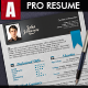 Professional Resume - GraphicRiver Item for Sale