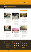 16_creolio-microblog-search.__thumbnail