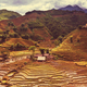 Fields in Vietnam - PhotoDune Item for Sale