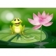 Frog Beside a Pink Flower at the Pond - GraphicRiver Item for Sale