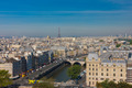 View of Paris from Notre Dame cathedral - PhotoDune Item for Sale