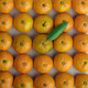 tangerines stacked - PhotoDune Item for Sale