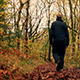 Man Walks Down Path In Woods - VideoHive Item for Sale