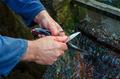 fisherman clean the fish - PhotoDune Item for Sale