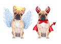 Devil and Angel - PhotoDune Item for Sale