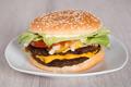 Burger In Plate - PhotoDune Item for Sale