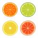 Citrus - GraphicRiver Item for Sale