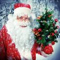 Teenager with Christmas Tree - PhotoDune Item for Sale