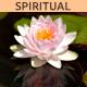 Spiritual Ethnic Meditation