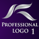 Professional Shining logo - GraphicRiver Item for Sale