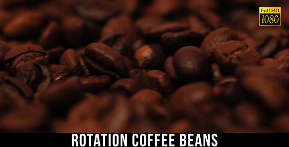 The Coffee Beans 3