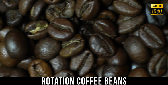 The Coffee Beans 4