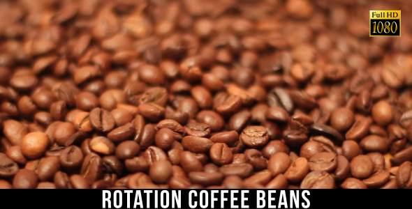 The Coffee Beans 5