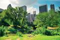 Central Park Spring - PhotoDune Item for Sale