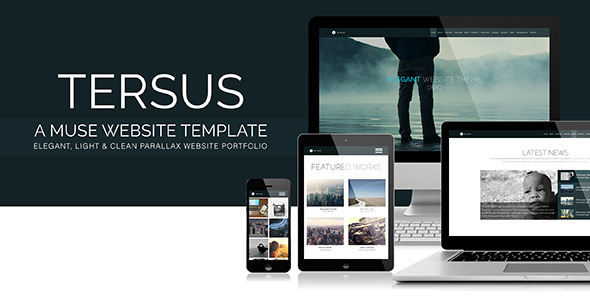 Tersus - Business Portfolio Parallax Muse Template - Creative Muse Templates