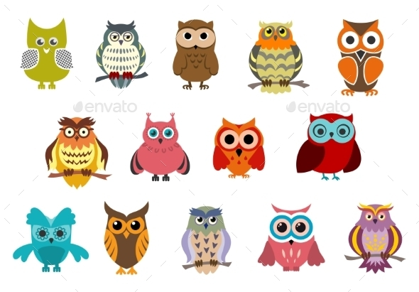 GraphicRiver Cartoon Owl Birds 9602194