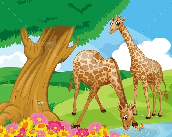 GraphicRiver Giraffes at the Riverbank 9605538