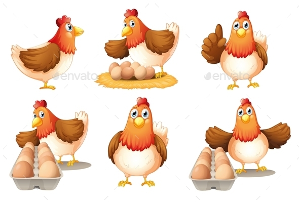 GraphicRiver Six Hens 9605591
