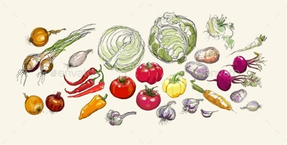 GraphicRiver Vegetables 9605852