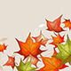 Background with Red Maple Leaves - GraphicRiver Item for Sale