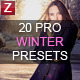 20 Winter Pro Presets - GraphicRiver Item for Sale