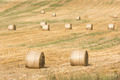Hay-Roll On Meadow - PhotoDune Item for Sale