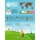 Golf Infographics Set - GraphicRiver Item for Sale