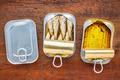 brisling sardines canned - PhotoDune Item for Sale