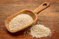scoop of white quinoa - PhotoDune Item for Sale