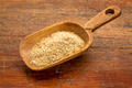 scoop of golden flax seed meal - PhotoDune Item for Sale