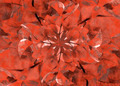 Floral Grunge Decorative Background - PhotoDune Item for Sale