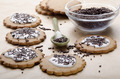 cookies with icing and chocolate sprinkle - PhotoDune Item for Sale