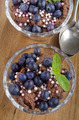 chocolate pudding with blueberries and mint - PhotoDune Item for Sale