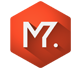 Elegant Minimal Logo 3