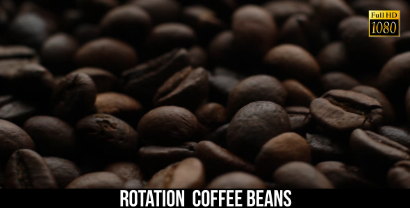 The Coffee Beans 8