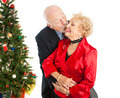 Holiday Seniors - Christmas Kiss - PhotoDune Item for Sale