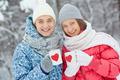 Winter dates - PhotoDune Item for Sale