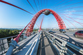 Zhivopisny Bridge is cable-stayed bridge that spans Moscow River - PhotoDune Item for Sale